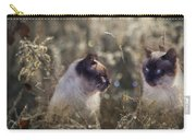 Are You Dreaming About Me - Siamese Feral Cat Carry-all Pouch