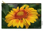 Arizona Apricot Carry-all Pouch