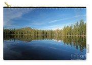 Arrowhead Reflection Carry-all Pouch