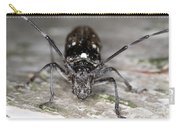 Asian Long-horned Beetle Carry-all Pouch