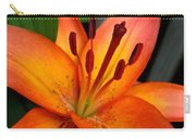 Asiatic Lily Named Gran Paradiso Carry-all Pouch
