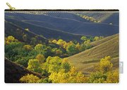 Aspen Bluffs In Autumn Colors Carry-all Pouch