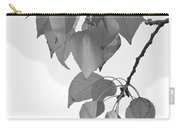 Aspen Leaves In Black And White Carry-all Pouch