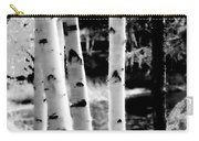 Aspens L Carry-all Pouch