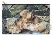 Atlantic Octopus In Shell Debris Carry-all Pouch