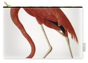 Audubon: American Flamingo Carry-all Pouch