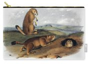 Audubon: Prairie Dog, 1844 Carry-all Pouch