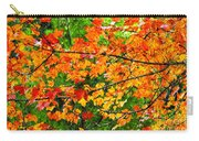 Autumn Abstract Painterly Carry-all Pouch
