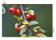 Autumn Berries Carry-all Pouch