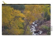Autumn Canyon Colorado Scenic View Carry-all Pouch