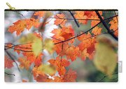 Autumn Day Dream Carry-all Pouch