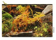 Autumn Ferns On Pickle Creek At Hawn State Park Carry-all Pouch