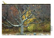Autumn Grandfather Tree 2 Carry-all Pouch