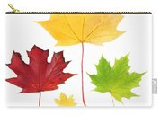 Autumn Leaves Isolated Carry-all Pouch