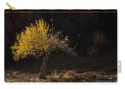 Autumn Light Carry-all Pouch by Mike  Dawson