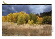Autumn Meadow Carry-all Pouch by Carol Cavalaris