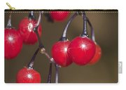 Autumn Red Berry Sparkle Carry-all Pouch
