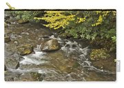 Autumn Stream 6149 Carry-all Pouch