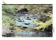 Autumn Streams Carry-all Pouch