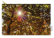 Autumn Sunburst Carry-all Pouch by Carolyn Marshall