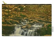Autumn Surrounded In Color Carry-all Pouch