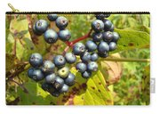 Autumn Viburnum Berries Series #3 Carry-all Pouch