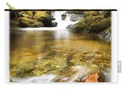 Autumnal Stream Carry-all Pouch by Mal Bray