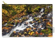 Autumn's Staircase Carry-all Pouch by Mike  Dawson