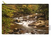Babcock Creek Scene 4 Carry-all Pouch