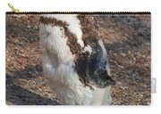 Baby African Penguin Carry-all Pouch