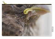 Baby Bird 3 Carry-all Pouch by Jessica Velasco