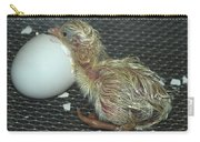 Baby Chick Resting  Carry-all Pouch