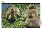Baby Geese Carry-all Pouch