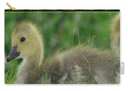 Baby Goose Takes A Break Carry-all Pouch
