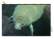 Baby Manatee Carry-all Pouch