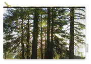 Back Lit Trees Carry-all Pouch