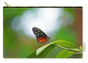 Backlit Butterfly Carry-all Pouch