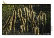 Backlit Cactus Carry-all Pouch