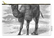 Bactrian Camel Carry-all Pouch