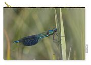 Banded Demoiselle Calopteryx Splendens Carry-all Pouch by Konrad Wothe