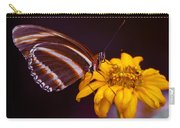 Banded Orange Heliconian Dryadula Phaetusa Carry-all Pouch