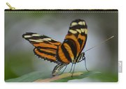 Banded Orange Carry-all Pouch