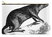 Bandicoot Carry-all Pouch