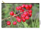 Baneberry Carry-all Pouch