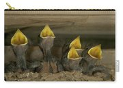 Barn Swallow Hirundo Rustica Chicks Carry-all Pouch by Cyril Ruoso