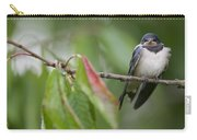 Barn Swallow Hirundo Rustica Fledgling Carry-all Pouch by Cyril Ruoso