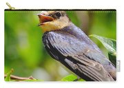 Barn Swallow In Sunlight Carry-all Pouch