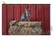 Barnyard Cat Carry-all Pouch
