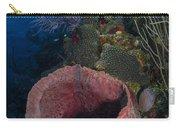 Barrel Sponge Seascape, Belize Carry-all Pouch