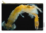 Bay Ghost Shrimp Carry-all Pouch